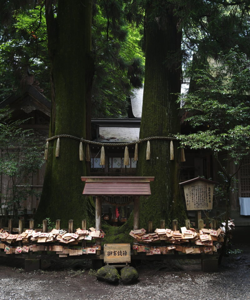 Wooden prayers in Tsuruoka