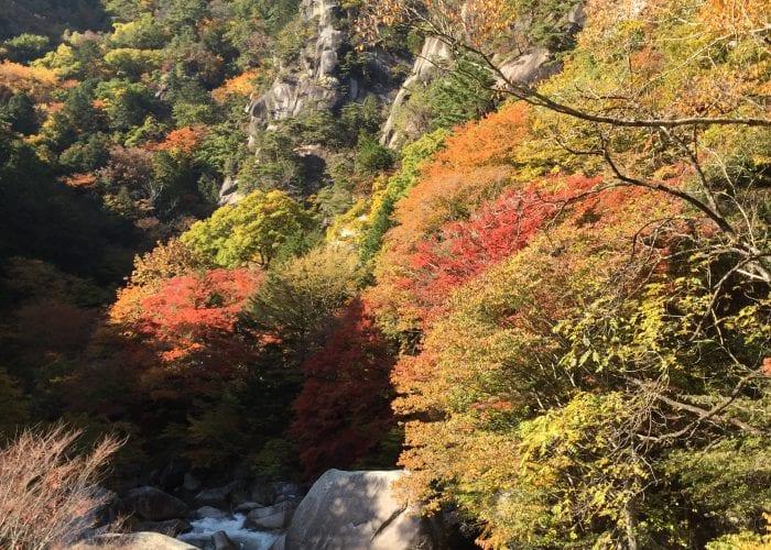 Fall foliage in Shosenkyo Gorge.