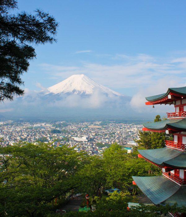 View of Chureito Pagoda and Mt. Fuji